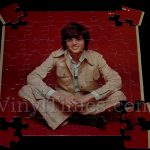 "Donny Osmond ""Alone Together"" Album Cover Jigsaw Puzzle"