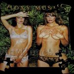 "Roxy Music ""Country Life"" Album Cover Jigsaw Puzzle"